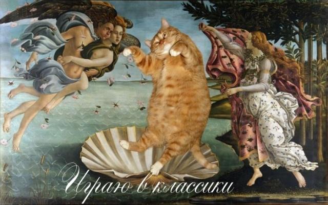cat3-r.jpg