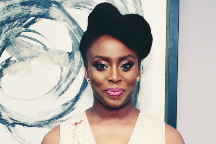 chimamanda adiche and the issue of abortion Chimamanda ngozi adichie says you can care about serious issues and still love makeup  by chimamanda ngoczi adichie.
