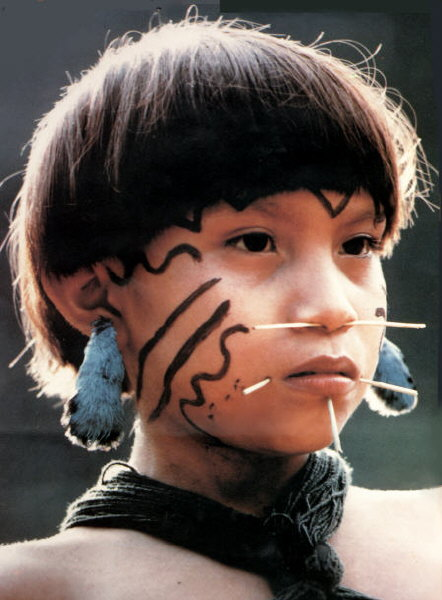 a comparison of the hopi tribe of the us and yanomami tribe of venezuela and brazil