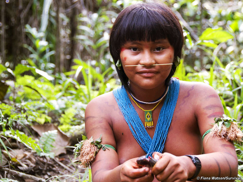 an analysis of the study of the yanomami tribe in the rainforests of brazil by eric dunning It might take five years of study and of his work among the yanomami people of venezuela and his fame among the science tribe as one yanomami man.