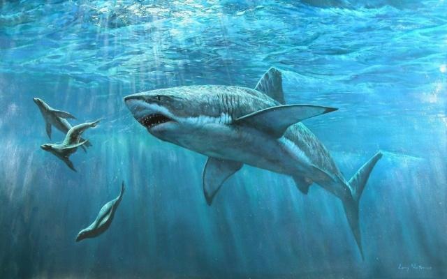 картинка AquaMari