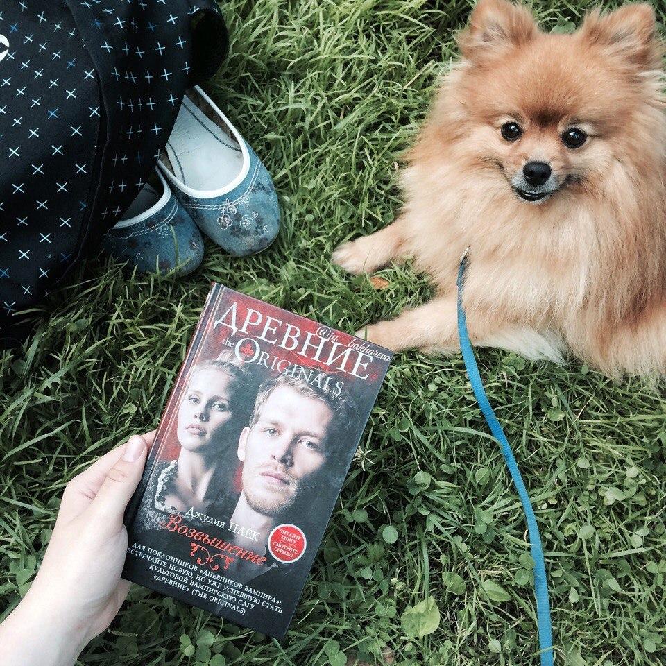 Читати книжку українська література 7 клас
