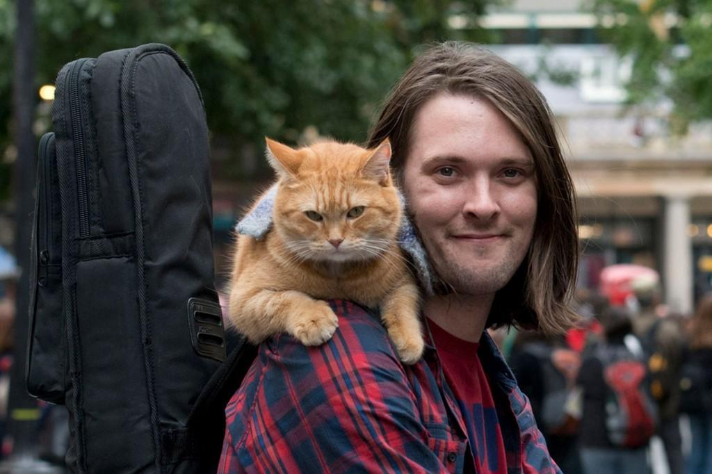 Уличный кот по кличке боб книга автор