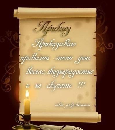 картинка Midolya