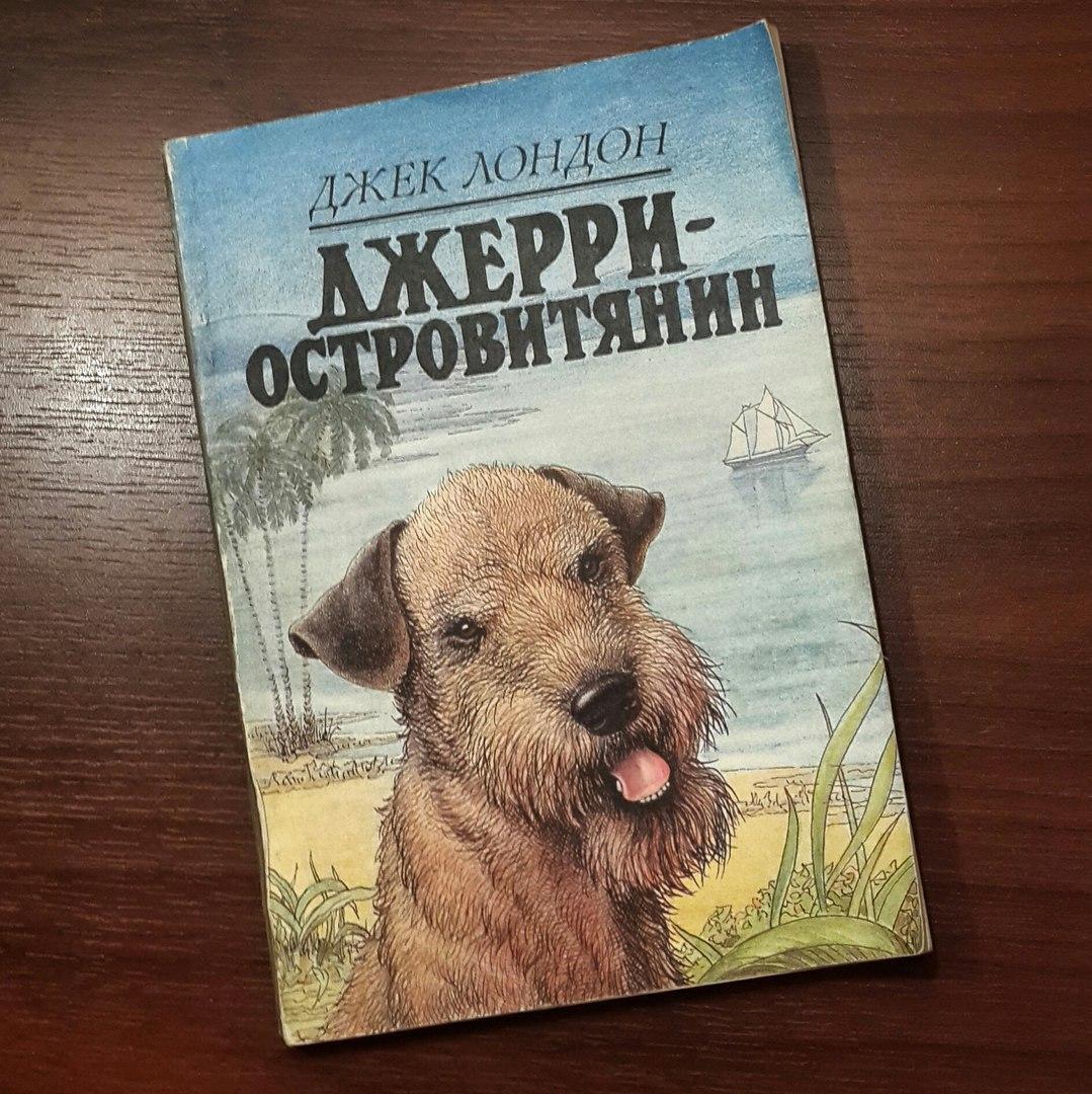 Книга любовь и власть читать