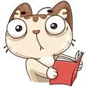 Мое состояние во время чтения