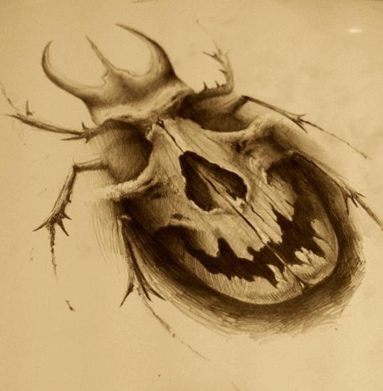 картинки черепов для выжигания отображает грациозность, поэтому