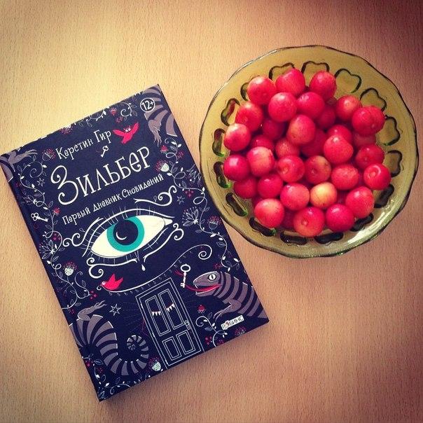 Скачать книгу зильбер первый дневник