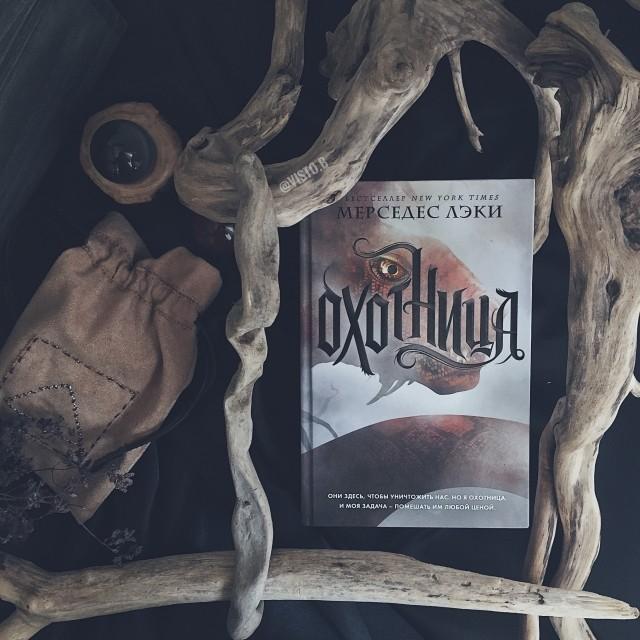 картинка books_for_owl
