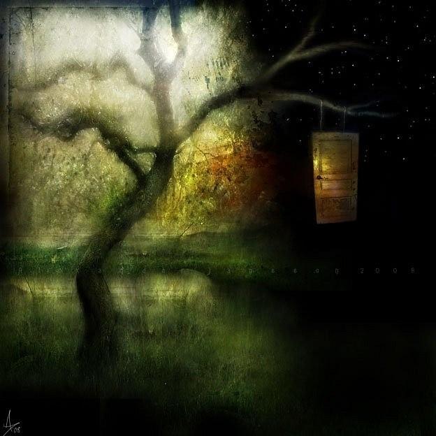 картинка lonely_firefly