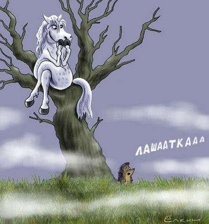 картинка markksana55