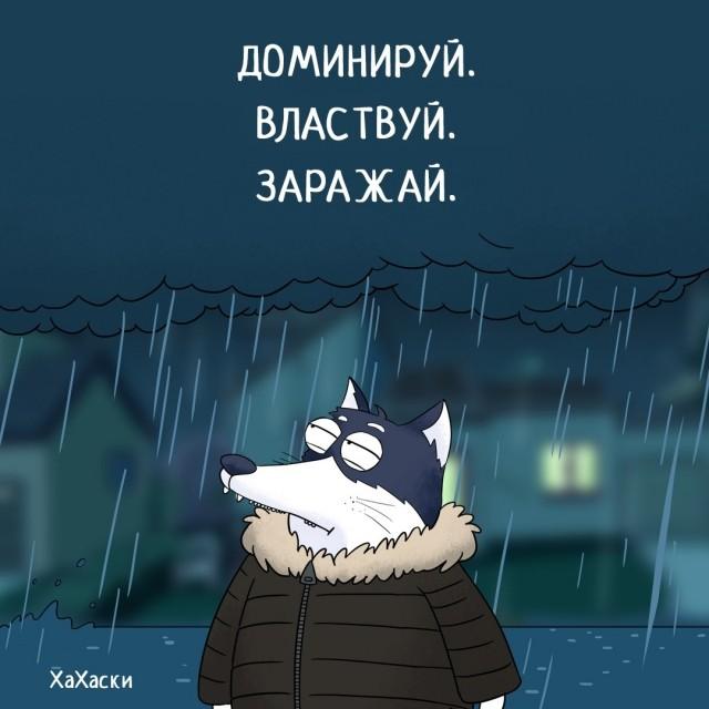 картинка marsuk