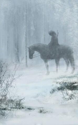 Лес зимой...