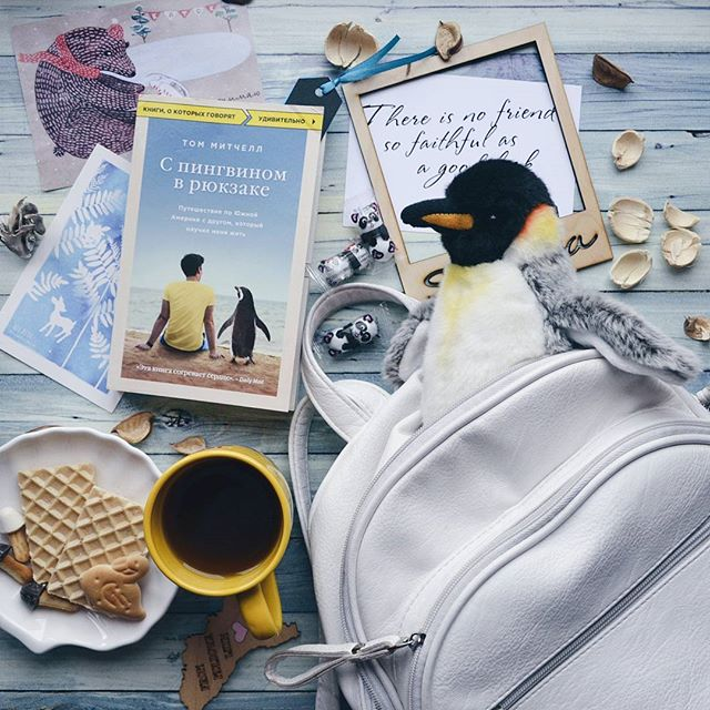 Пингвин ридер скачать книги