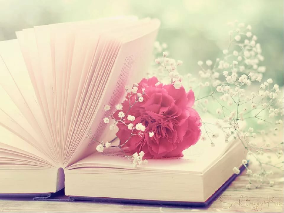 Книга прекрасные картинки