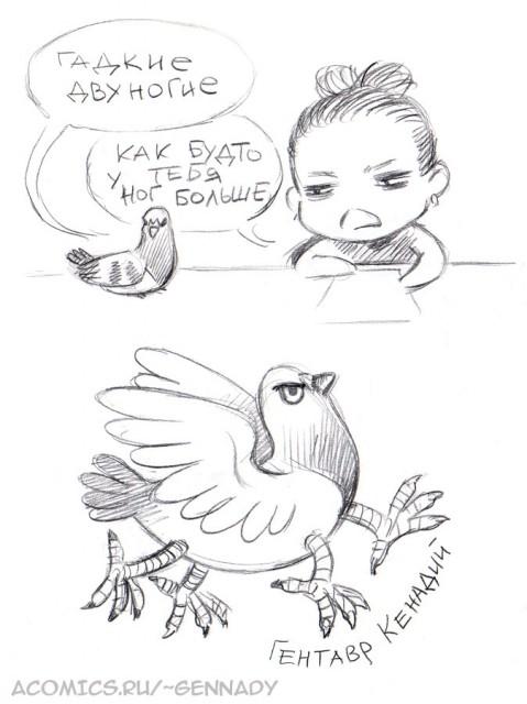 four-legged pigeon