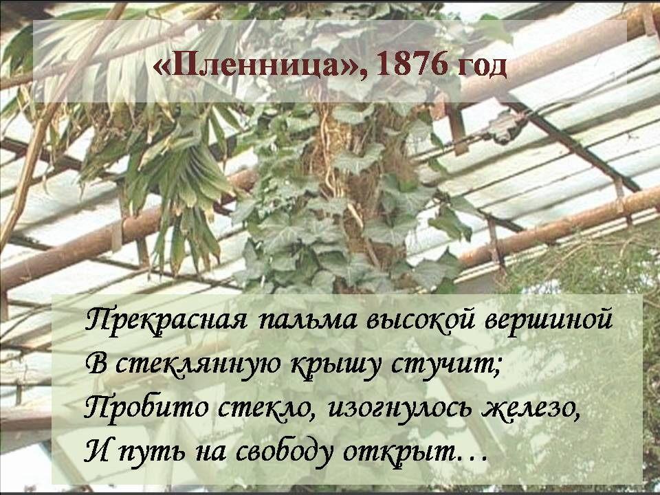 Демоверсия русский язык 2016